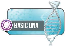 Basis DNA ThetaHealing Seminar Valeska Otto Coaching Bewußtsein